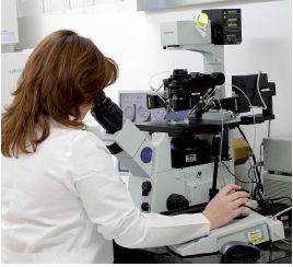 mikroskop vary