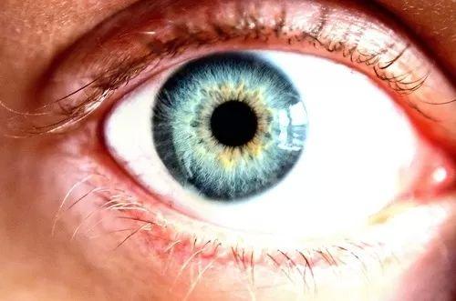 eye 70393 640