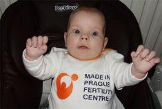 Dárcovství embryí - fotka před