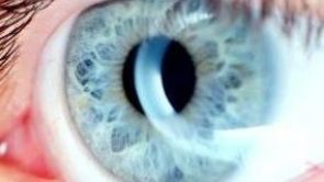 Oko -  okno do zdraví člověka