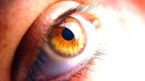 Má výživa vliv na zdraví očí? Pět příkladů toho, jak strava pomáhá našemu zraku