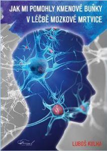 Mozková mrtvice a jiné chronické nemoci